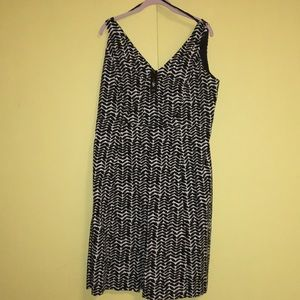 Cotton black and white NWT East fifth 16 W dress